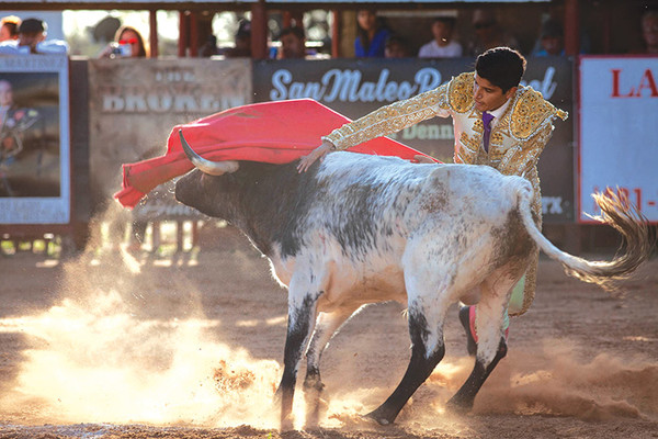 20200212 bloodless bullfight01053