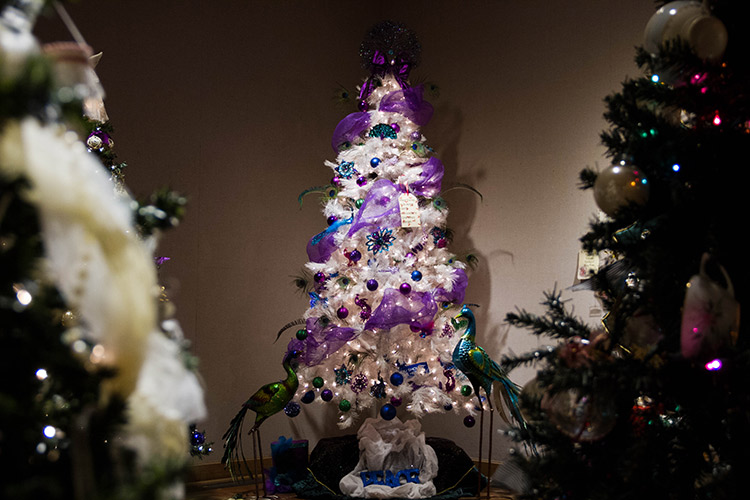 20171213 Harlingen Museum Christmas Trees GU IMG 1313